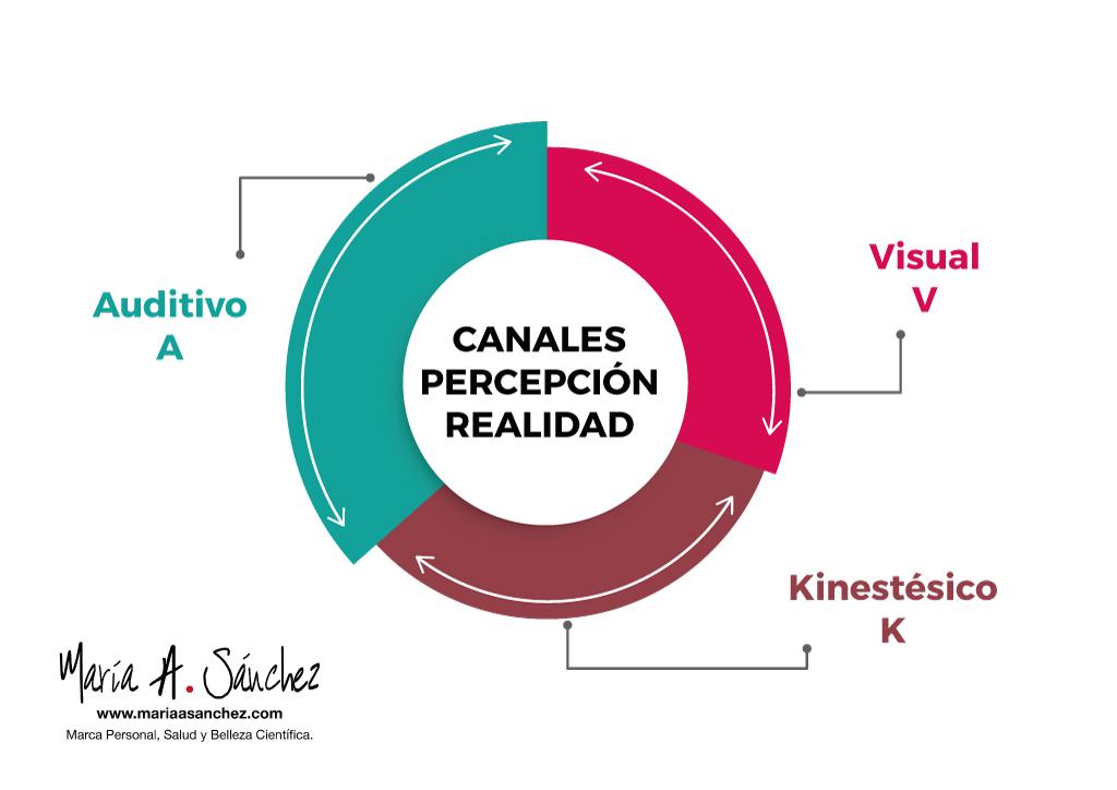 Canales-Percepcion-Realidad-Maria-A-Sanchez-Asesora-de-Imagen-Personal-y-Profesional